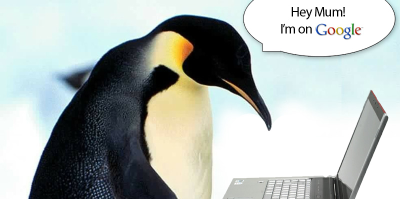 Google Penguin SEO: How It Will Affect Your Website's Rankings